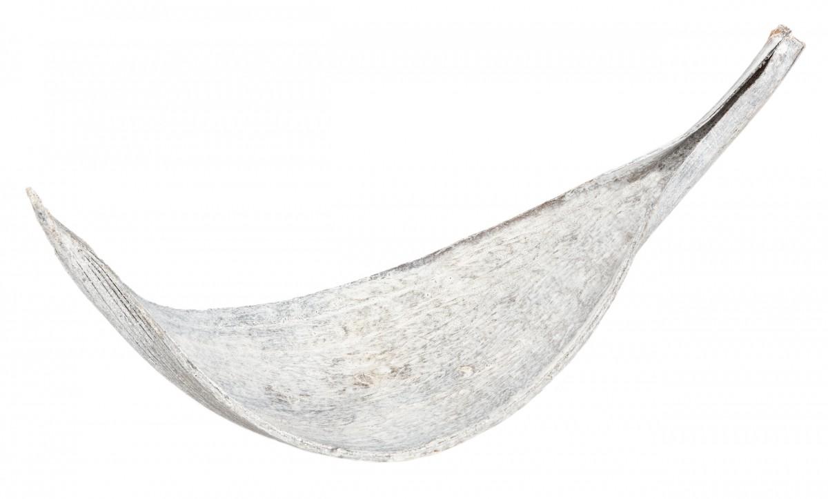 Kokosblatt small weiß ca. 10-30cm