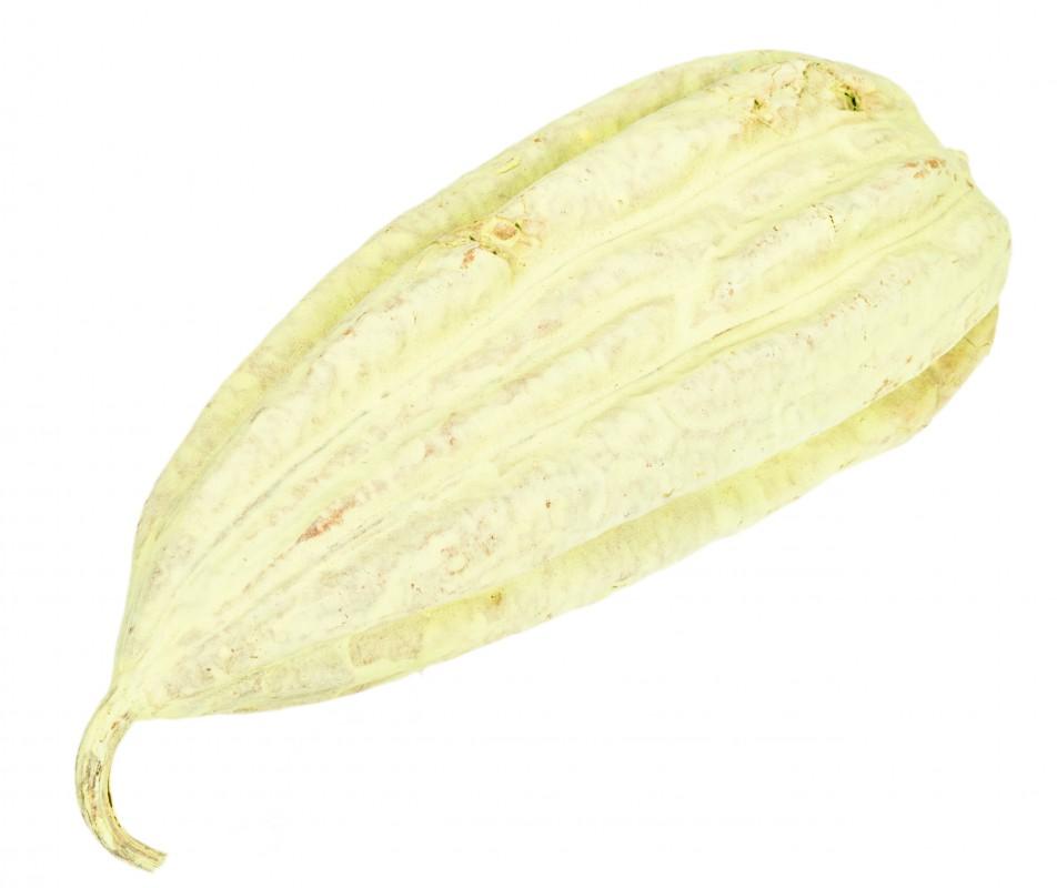 Luffa Frucht apfelgrün ca. 10-15cm | Schwammgurke