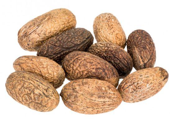 Uxi Nuss Samen 10 Stück ca. 3-5cm – Bild 1