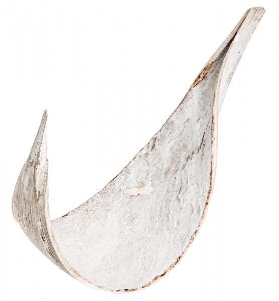 Kokosblatt medium Galera weiß 5 Stück