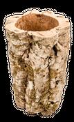 Korkeiche XXL 50-60cm x  ⌀ = 20-35cm | Korktunnel – Bild 2