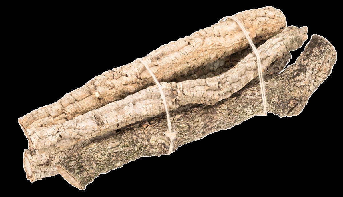 Korkeichen Stamm 50cm 5 Stück | Korkeiche