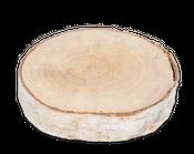 Birkenscheibe Ø10-15cm x 2cm – Bild 1