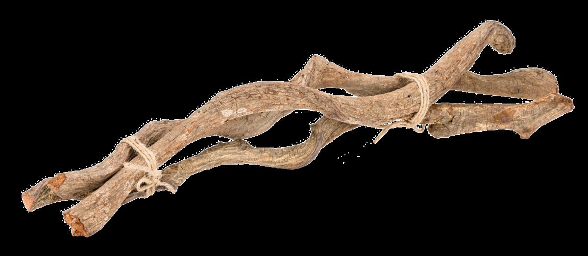 Drachen Liane natur 3 Stück 60cm 2-3cm