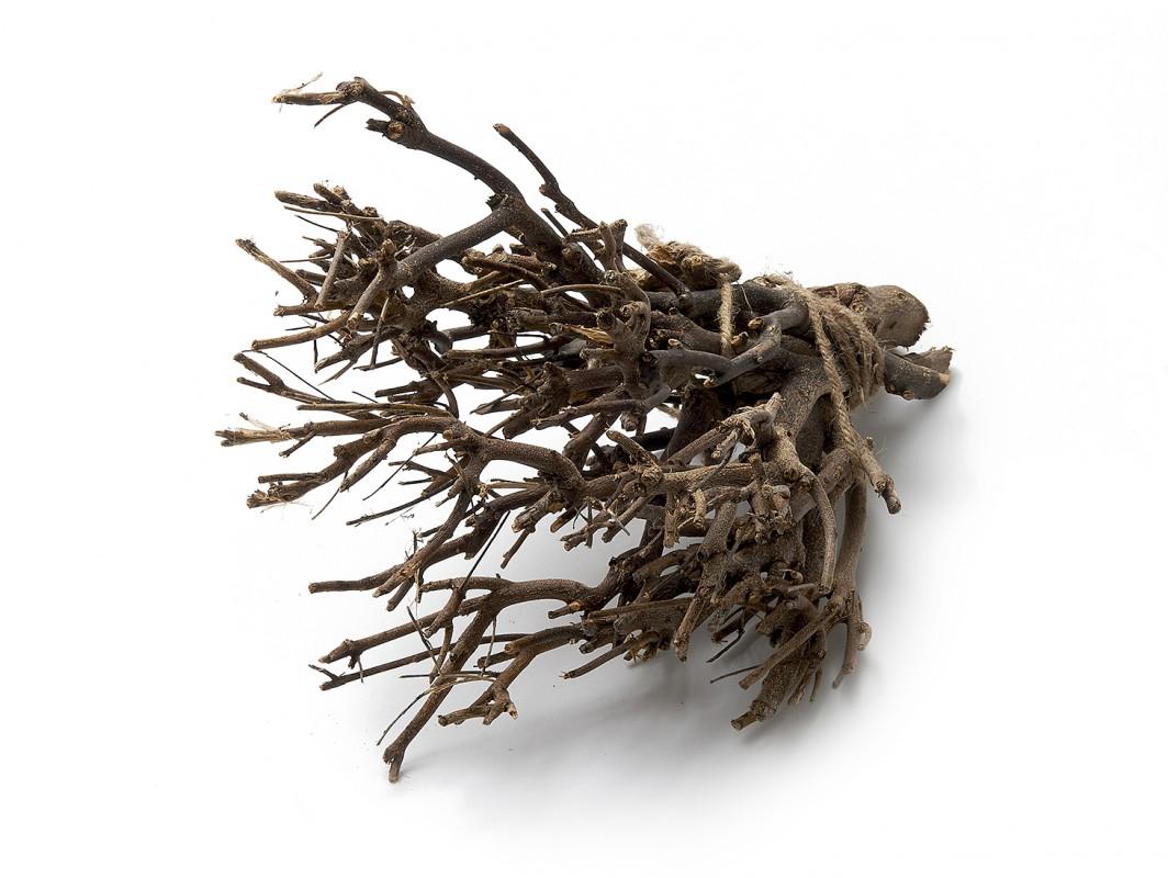 Dekobündel John Branch natur ca. 35cm 0,5kg