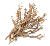 Dekobündel John Branch natur ca. 35cm 0,5kg – Bild 2