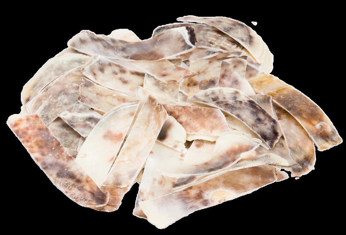 Placuna Placenta in Streifen ca. 0,25kg | Perlmuttstreifen