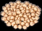 Weinbergschnecken gold 250g – Bild 1