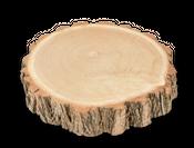 Akazien Baumscheibe Ø20-30cm – Bild 1