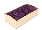 Islandmoos lila / aubergine 500g – Bild 1