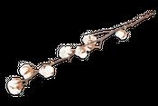 Baumwollzweig mit 8 Dolden ca. 65-75cm | Gossypium herbaceum – Bild 1