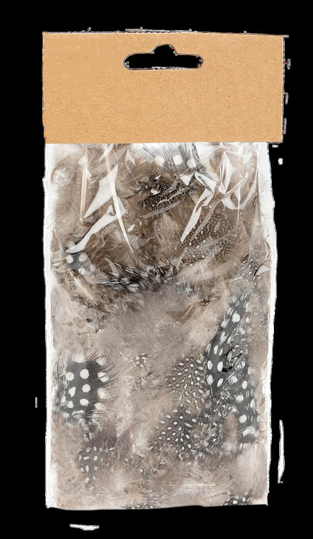 Perlhuhnfedern natur im Beutel mit 5g | Perlhuhn Feder