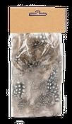 Perlhuhnfedern natur im Beutel mit 5g | Perlhuhn Feder – Bild 1