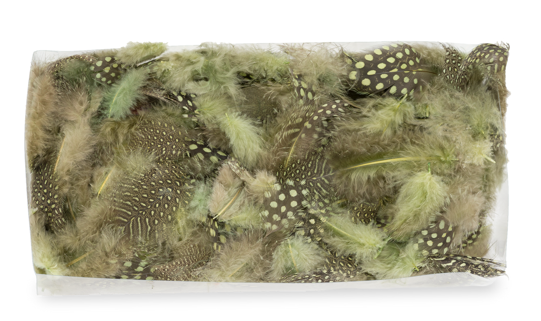 Perlhuhnfedern grün 10g | Perlhuhn Feder