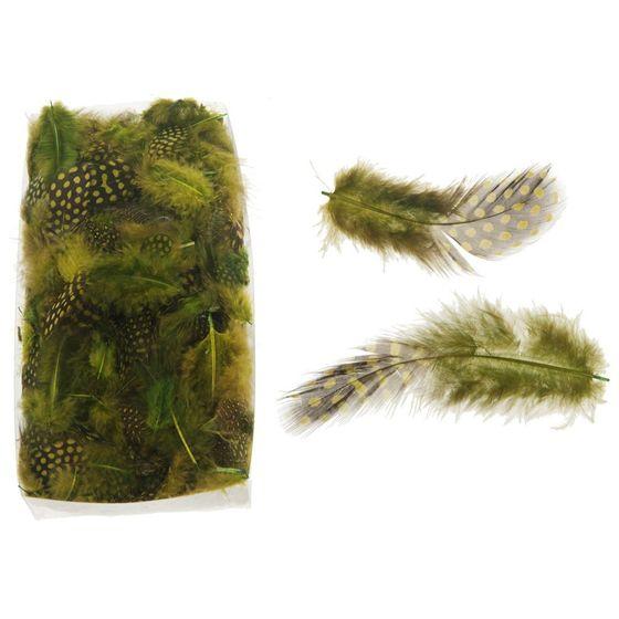 Perlhuhnfedern grün 10g | Perlhuhn Feder – Bild 3