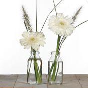 Glasfläschchen 32 Stück ca. 10,5x4,8cm | Deko Glasflaschen – Bild 3