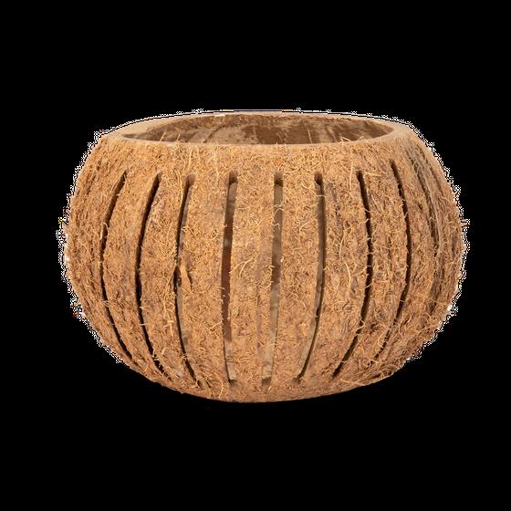 Kokos Becher geschlitzt Ø 10-13cm – Bild 1