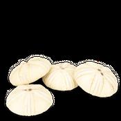 Seeigel Gehäuse groß ca. 12-14cm – Bild 2