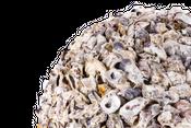 Muschelkugel Talaba Auster Ø 50cm – Bild 2