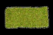 Moosplatte ca. 38x18cm | Moosmatte