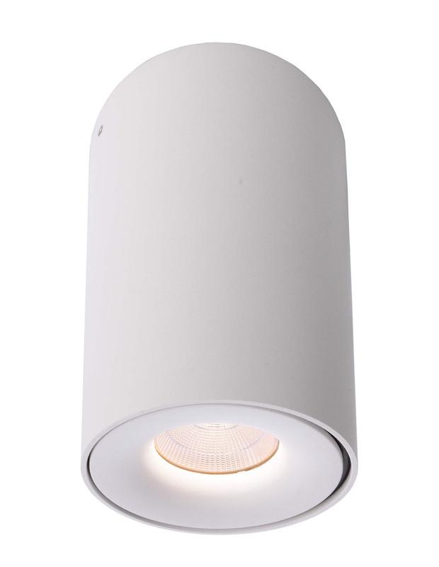 Bengala LED weiß 48° 230V AC 9,20 W 886 lm 3000 K - Deckenaufbauleuchte – Bild 1