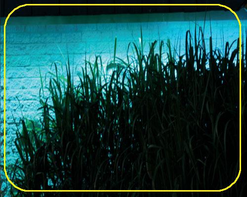 24V RGB Wall Washer 50cm 18x EDISON LED, 0,9A/22 Watt, 45°, 6-30m – Bild 5