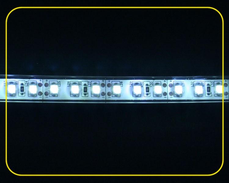 IP65 LED Streifen 2,5cm | Kaltweiß | 12V 0,24W | dimmbar – Bild 1