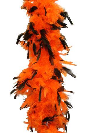 Federboa mit schwarzen Spitzen 180cm lang in verschiedenen Farben – Bild 2