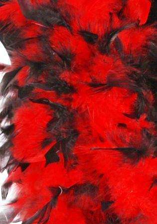 Federboa schwarz gespitzt / Federboa zweifarbig – Bild 6