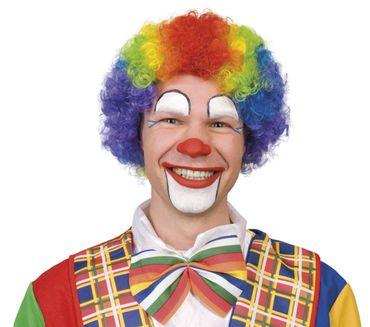 Clowns Perücke bunt