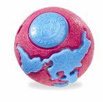 Planet Dog Orbee-Tuff Orbee World Ball – Bild 4