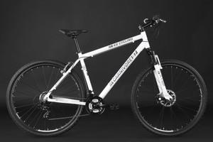 "Mountainbike Hardtail 29"" Carnivore weiss-grau – Bild 10"