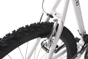 "Mountainbike Hardtail 26"" Carnivore weiss-grau – Bild 9"