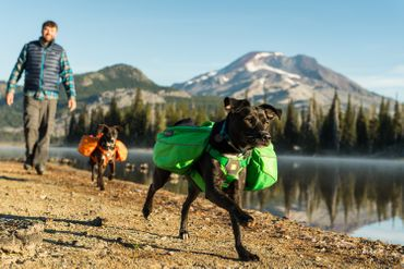 Ruffwear Approach PackTM Meadow Green XS – Bild 2