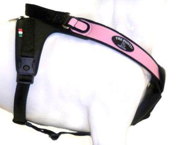 Tre Ponti Geschirr Potenza mit schwarzen Stoffrand rosa 50 - 65 cm bis ca. 10 - 20 kg