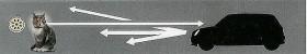 Hunter Katzenhalsband Flashlight Nylon schwarz reflektierend – Bild 2