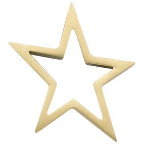 Stern - Anhänger Goldanhänger aus 585 Gold mattiert
