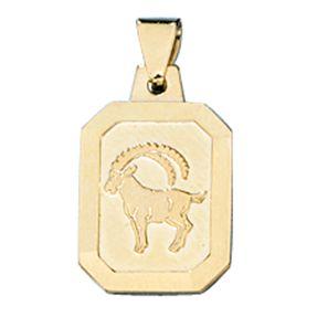 Sternzeichen Steinbock, Goldanhänger Anhänger, 333 Gold