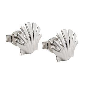 Ohrstecker-Muschel-aus-925-Silber-glänzend