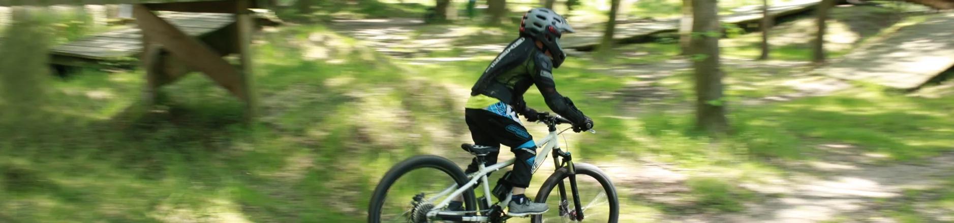 Ben E-Bike