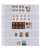 Crystal clear pocket page with 5 strips (50 mm), with black backing page