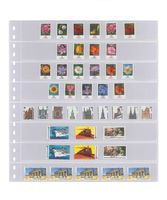 Crystal clear pocket page with 8 strips (30 mm), with black backing page - pack of 10