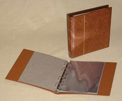 KOBRA - FDS - ring binder with 20 crystal clear foil sleeves made of hard foil, tan 230 x 210 mm