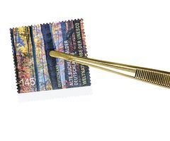 Tweezer, gold-plated, 120 mm, with straight tip - SPECIAL EDITION  – Bild 5