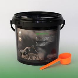 Equina Secrolin