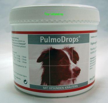 Pulmodrops Kaudrops zur Stärkung des Bronchialsystems und der Abwehrkraft
