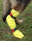 DogGusti  wasserdichter Pfoten-Verbandschutz für Hunde – Bild 1