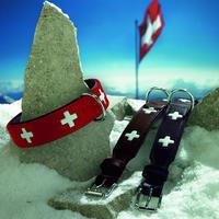 """Halsband """"Swiss"""" (schwarz)"""