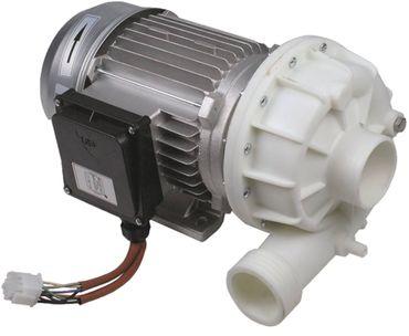 ATA Pumpe ZF650SX für Spülmaschine Band AT105, AT110, AT116 50Hz