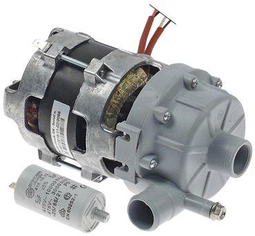 LGB ZF119DX Pumpe für Elframo BE35 Ausgang 26mm Eingang 28mm 50Hz